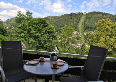 SchwarzwaldDELUXE Ferienwohnung Bad Wildbad - Terrasse 01