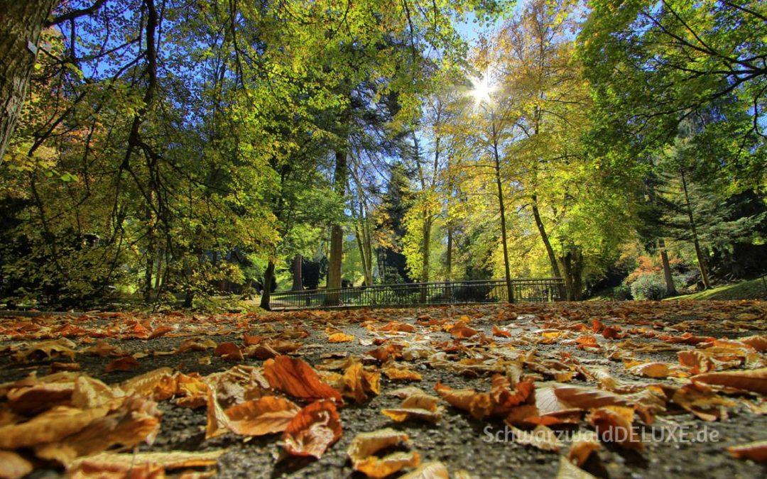 Aktiv Entspannen im Kurpark Bad Wildbad